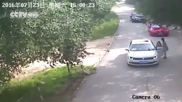 Lady Snatched By Tiger