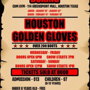 2017 Golden Gloves